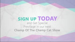 Chamber – Champ Of The Champ Member